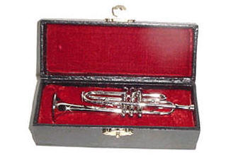 Trumpet and case for dolls
